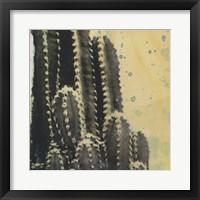 Framed Desert Dreams IV