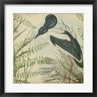 Heron & Ferns I Framed Print