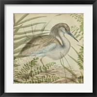Heron & Ferns II Framed Print