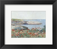 Framed Poppies, Isles of Shoals, 1891