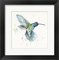 Framed Hummingbird Flurry