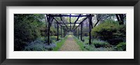Framed Garden path, Old Westbury Gardens, Long Island