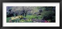 Framed Country garden, Old Westbury Gardens, Long Island