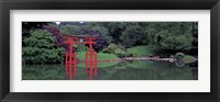 Framed Japanese Garden