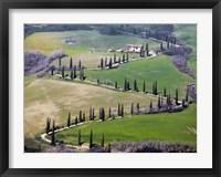 Framed Road near Montepulciano, Tuscany