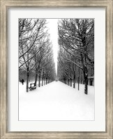 Framed Tuileries Garden under the Snow, Paris
