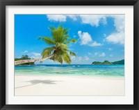 Framed Tropical beach, Seychelles (detail)
