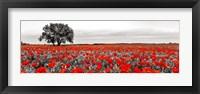 Tree in a Poppy Field 2 Framed Print