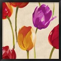 Framed Tulip Funk (detail)