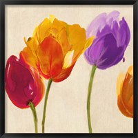 Tulips & Colors (detail) Framed Print
