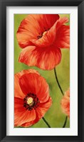 Poppies in the Wind I Framed Print