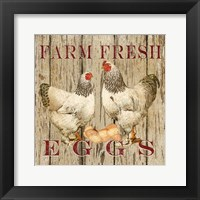 Framed Farm Fresh Eggs II