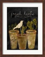 Framed Fresh Herbs