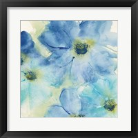 Seashell Cosmos I Framed Print