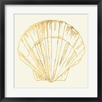 Coastal Breeze Shell Sketches V Framed Print
