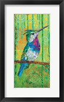 Plovercrest Framed Print