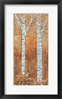 Birch Tryptic II Framed Print