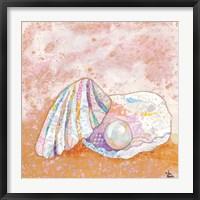Framed Pearl Seashell