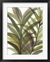 Framed Tropical Greens II