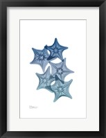 Tidal Starfish 1 Framed Print