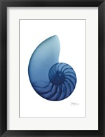 Framed Scenic Water Snail 2