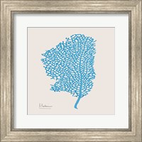 Framed Cobalt Sea Fan