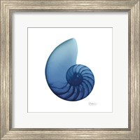 Framed Scenic Water Snail 3