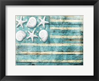 Framed Coastal American Flag