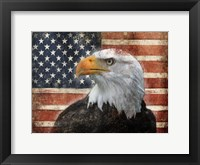 Framed Eagle and Flag