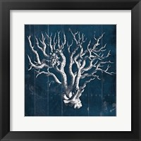 Framed Wood Coral five