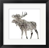 Framed Wood Moose White Mate