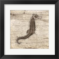 Wooden Horse Framed Print