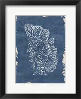 Framed Blue Hue Coral 3