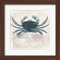 Framed Crab Coast Vision