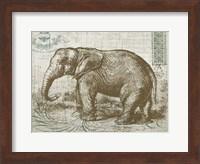 Framed Elegant Safari Elephant 1