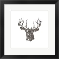 Framed Big Buck