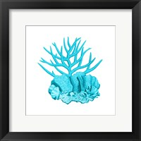 Blue Coral 1 Framed Print