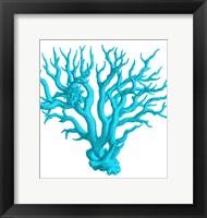 Blue Coral 3 Framed Print