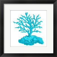 Blue Coral 4 Framed Print