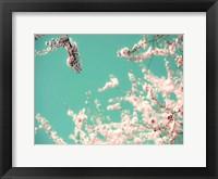 Framed Apple Sky