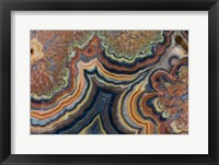 Framed Flowering Tube Onyx, Mexico 2