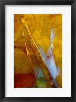Framed Piute Jasper 2