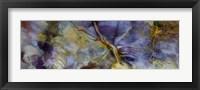 Framed Purple Jasper