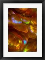 Framed Fire Opal from Australia 2