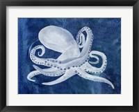 Framed Cephalopod I