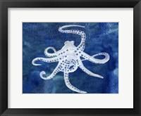 Framed Cephalopod II