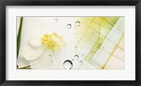 Serene Photo Collage I Framed Print