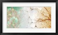 Serene Photo Collage III Framed Print