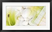 Serene Photo Collage VI Framed Print