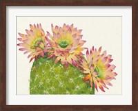 Framed Desert Blossoms I